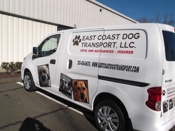 Van decals for pet transportation companies in Southwestern CT